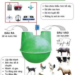 mo-hinh-ham-biogas